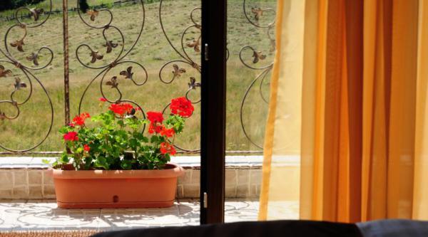 Pensiunea DIVA Portofoliu camere 462